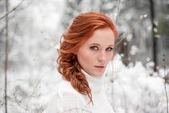 冬天妇女画象在12月森林里 免版税图库摄影