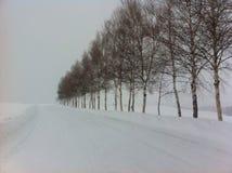 冬天妙境在北海道,日本 库存照片