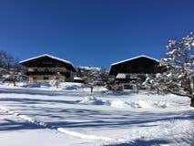 冬天妙境, Goldegg,奥地利 免版税图库摄影