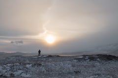 冬天孑然 库存图片