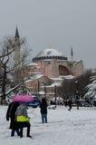 冬天季节II 库存照片