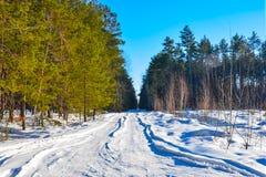 冬天小乡下公路通过多雪的领域 免版税库存照片