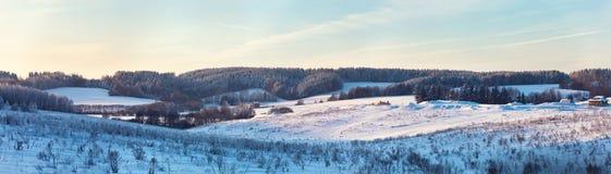 冬天小山 冻结草甸 结构树的弗罗斯特 免版税图库摄影