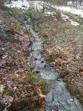 冬天小河 库存图片