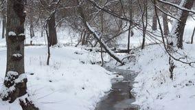 冬天小水小河风景 股票视频
