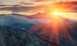 冬天山全景在日出的 环境美化与有雾的用霜盖的小山和树 免版税库存图片