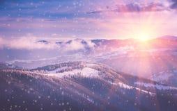 冬天山全景在日出的 环境美化与有雾的用霜盖的小山和树 库存照片
