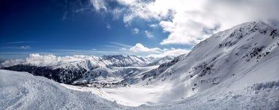 冬天山冷杉森林多雪的全景 免版税库存图片