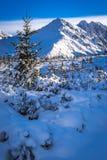 冬天山峰在一个晴天 库存照片