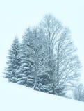 冬天山有薄雾的降雪风景 库存照片