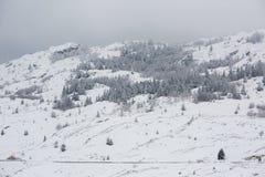 冬天山风景在杜米托尔国家公园国家公园 免版税库存图片