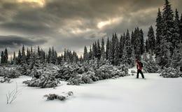 冬天山 免版税库存图片