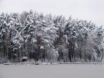 冬天岸湖杉木森林森林小屋码头银梦想`睡美人` `多雪的眼皮` 库存图片