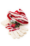 冬天帽子和手套 免版税图库摄影