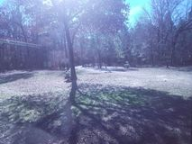 冬天强光 库存图片