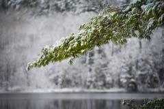 冬天战战兢兢到达 库存照片