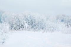 冬天抽象风景背景 库存图片