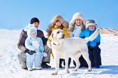 冬天拉布拉多狗 免版税库存照片
