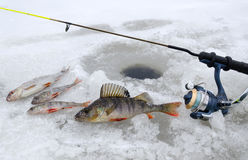 冬天捕鱼风景 图库摄影