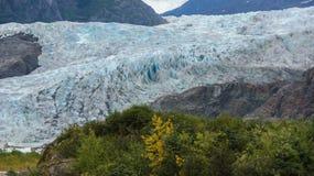 冬天接近阿拉斯加州美国 免版税库存图片