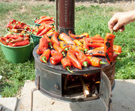 冬天提供的烤红色辣椒粉 库存图片