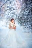 冬天新娘 免版税库存图片