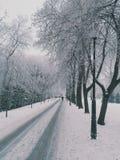 冬天方式 库存图片