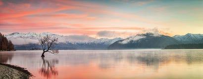 冬天日出瓦纳卡湖 免版税库存照片