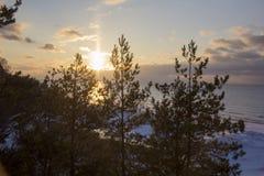冬天日出雪波儿地克的海滩,拉脱维亚, saulkrasti 免版税库存图片