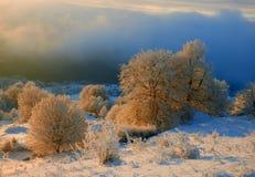 冬天日出 库存照片