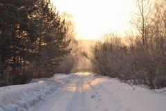 冬天日出 库存图片