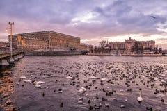 冬天日落在斯德哥尔摩 库存照片