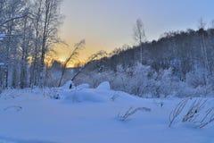 冬天日落在森林里。 免版税图库摄影