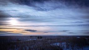 冬天日落在森林里 免版税图库摄影