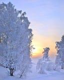 冬天日落风景 免版税库存图片
