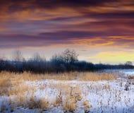 冬天日落 库存图片