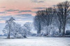 冬天早晨在布里曼德国附近的Teufelsmoor 免版税库存照片