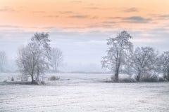 冬天早晨在布里曼德国附近的Teufelsmoor 库存图片