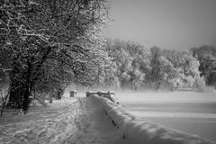 冬天早晨在赫梅利尼茨基城市公园  图库摄影