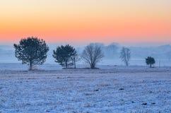冬天早晨风景 免版税库存图片
