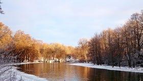 冬天早晨 免版税库存照片