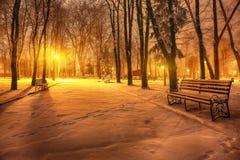 冬天晚上在中央公园 图库摄影