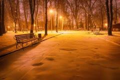 冬天晚上在中央公园 库存图片