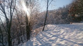 冬天晴天和冻结的自然 免版税库存照片