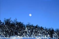 冬天月亮 库存照片