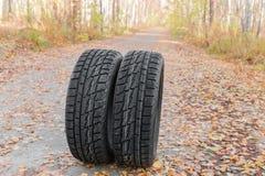 冬天有不对称的踩的车胎在森林公路 库存图片