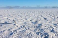 冬天有雾的横向 库存图片