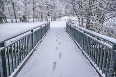 冬天木头风景 库存照片