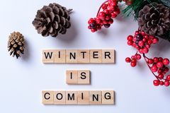 冬天来 从信件的词在与杉木锥体、杉木山脉灰分支和莓果的白色背景  免版税库存图片