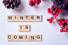 冬天来 从信件的词在与杉木锥体、杉木山脉灰分支和莓果的白色背景  库存照片